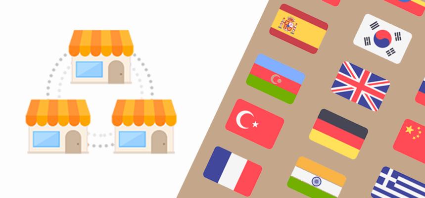 Shopify Multi-Store vs Shopify Multilingual Store